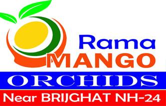 Rama Mango orchids